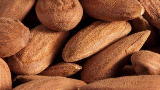 Mandeln/Nüsse-Rohstoffe