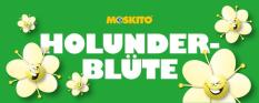 Slush Konzentrat Holunderblüte 1:5 10 Liter Kanister - ohne AZO